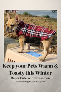 Fashion for pets